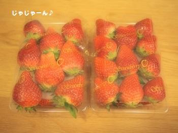 いちご直売3