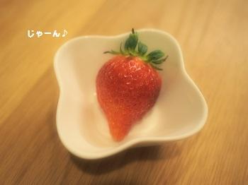 いちご丸かじり1