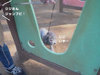 公園2-20130328-2