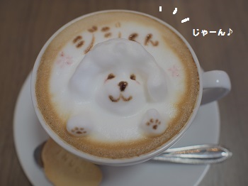 しろいぬカフェ20150412-12