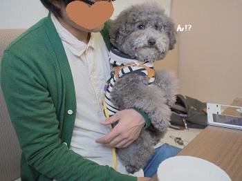 しろいぬカフェ20150412-15