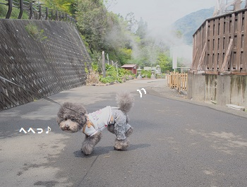 峰温泉大噴湯公園20150416-8