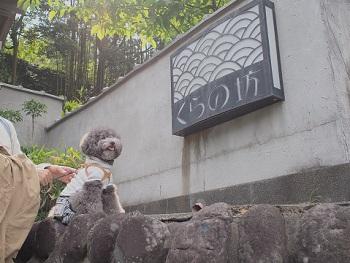 くらの坊20150416-12