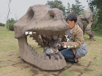 小室山20150416-10