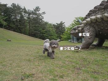 小室山20150416-22