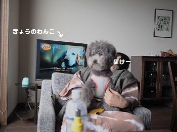 玉響の風朝ごはん20150417-1