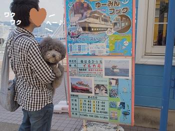 はるひら丸20150417-1