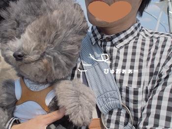 はるひら丸20150417-16