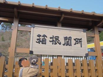 箱根20150417-2