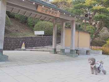 箱根20150417-5