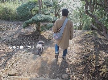 箱根20150417-15