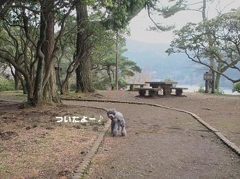 箱根20150417-20