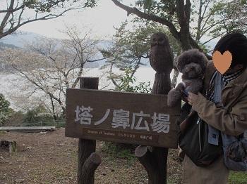 箱根20150417-21