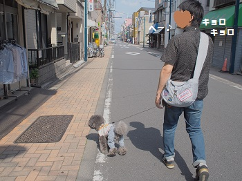 街並み散策20150502-8