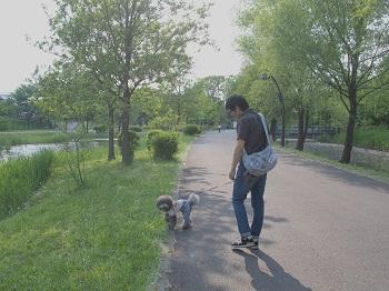 水元公園20150502-4