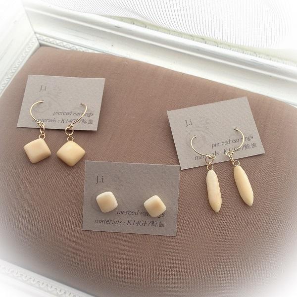 accessories_027a_pierced_earrings.jpg