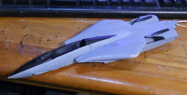 hasegawa_F-14B_103_04.jpg