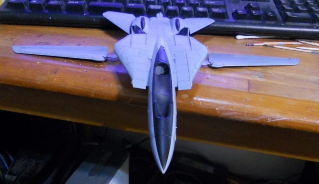 hasegawa_F-14B_103_05.jpg