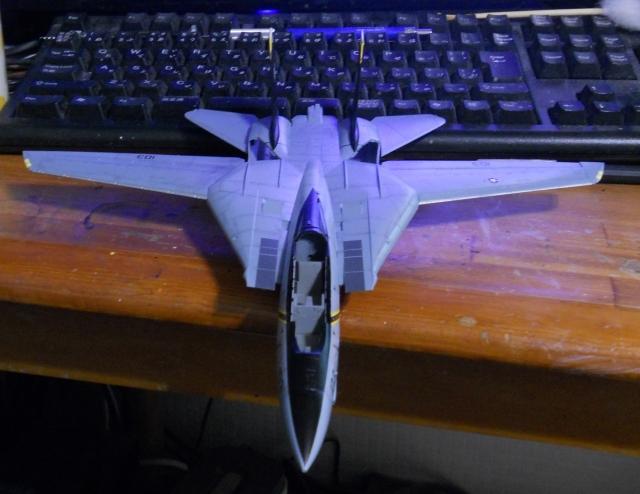hasegawa_F-14B_103_06.jpg