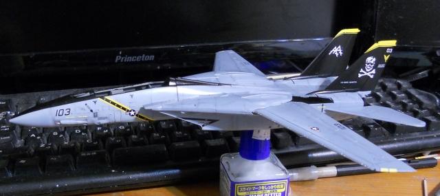 hasegawa_F-14B_103_07.jpg