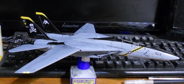 hasegawa_F-14B_103_08.jpg