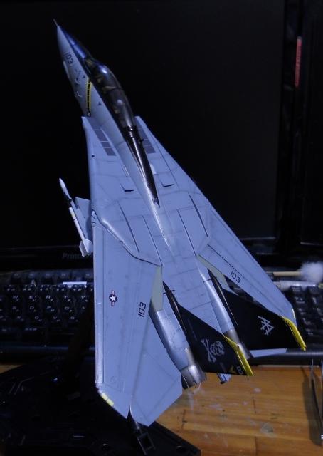hasegawa_F-14B_103_10.jpg