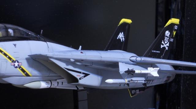 hasegawa_F-14B_103_26.jpg