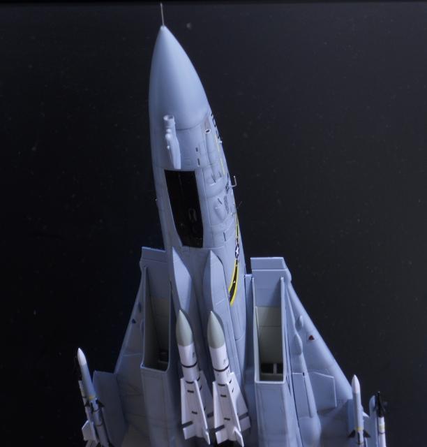 hasegawa_F-14B_103_28.jpg