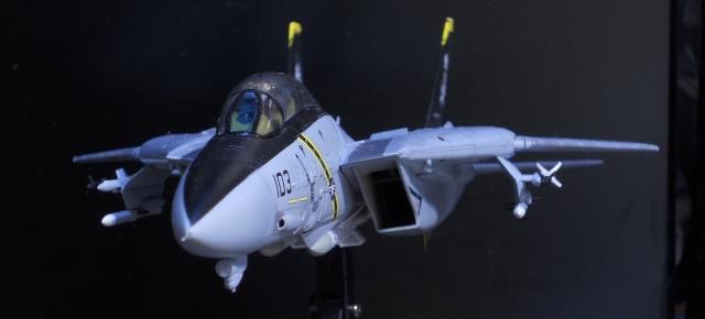 hasegawa_F-14B_103_30.jpg