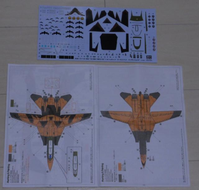 hasegawa_F-14D_pf_01.jpg