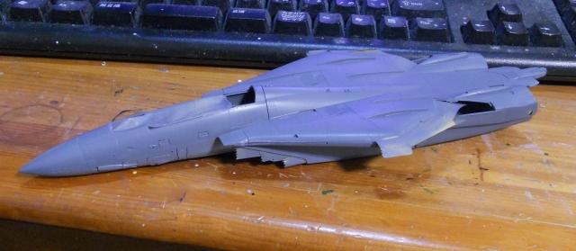 hasegawa_F-14D_pf_03.jpg