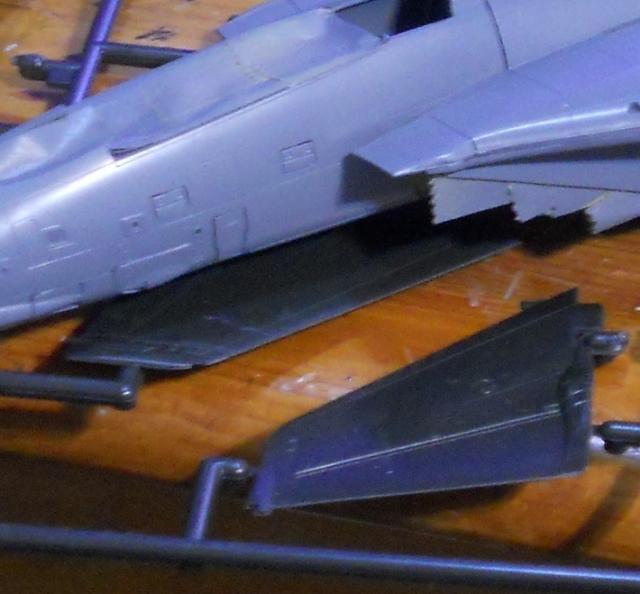 hasegawa_F-14D_pf_04.jpg