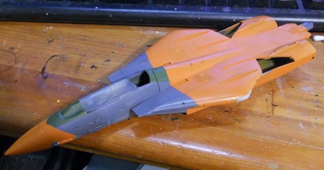 hasegawa_F-14D_pf_05.jpg