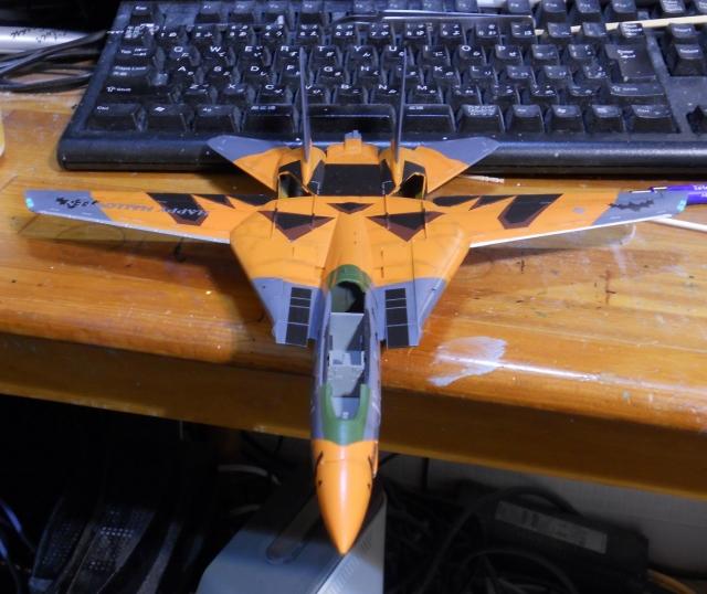 hasegawa_F-14D_pf_07.jpg