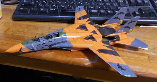 hasegawa_F-14D_pf_08.jpg