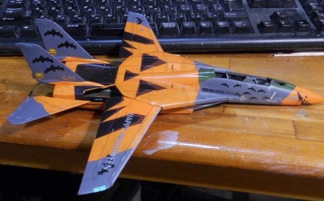 hasegawa_F-14D_pf_09.jpg