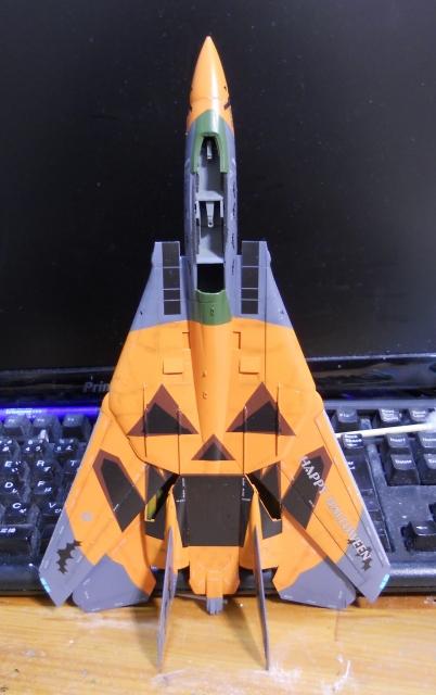 hasegawa_F-14D_pf_10.jpg