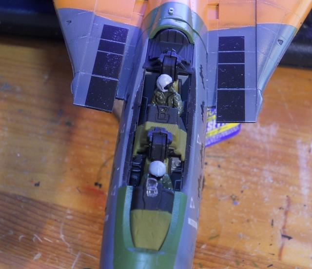 hasegawa_F-14D_pf_11.jpg
