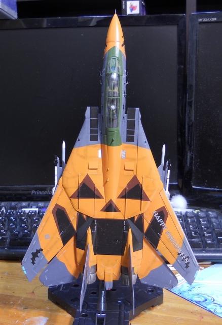 hasegawa_F-14D_pf_12.jpg
