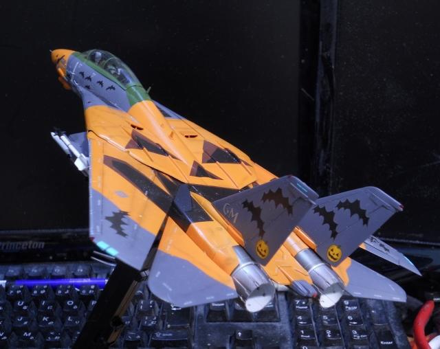 hasegawa_F-14D_pf_13.jpg