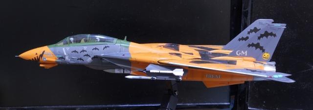 hasegawa_F-14D_pf_14.jpg