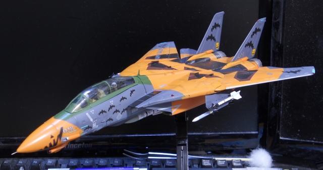 hasegawa_F-14D_pf_15.jpg