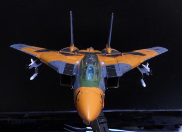 hasegawa_F-14D_pf_16.jpg