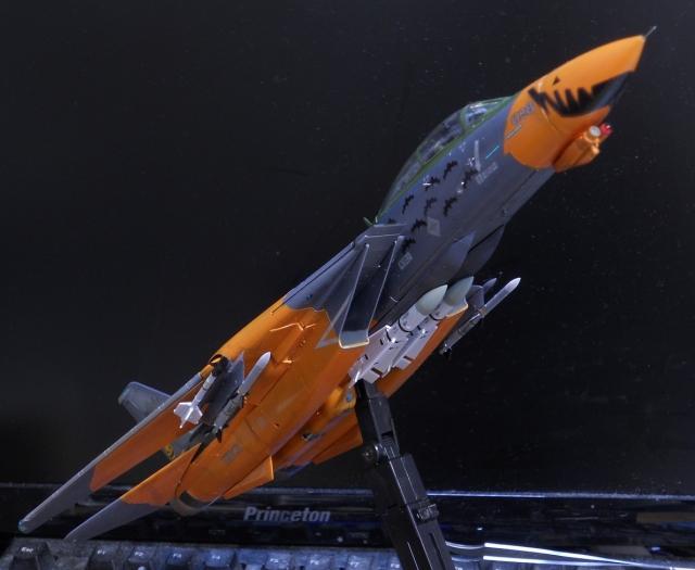 hasegawa_F-14D_pf_17.jpg
