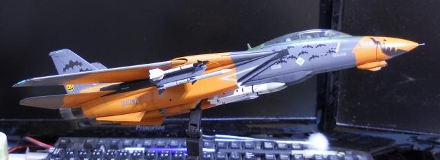hasegawa_F-14D_pf_18.jpg