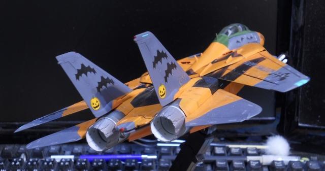 hasegawa_F-14D_pf_19.jpg