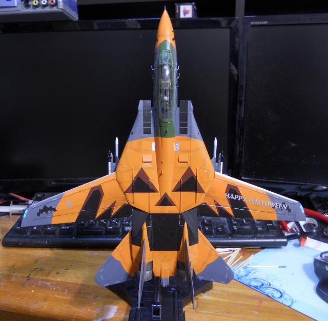 hasegawa_F-14D_pf_20.jpg