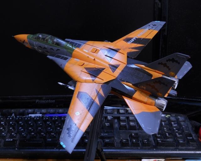 hasegawa_F-14D_pf_21.jpg