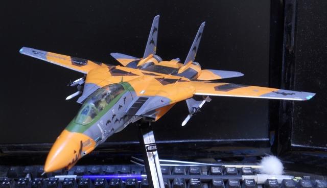 hasegawa_F-14D_pf_22.jpg