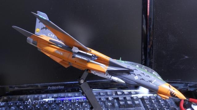 hasegawa_F-14D_pf_23.jpg